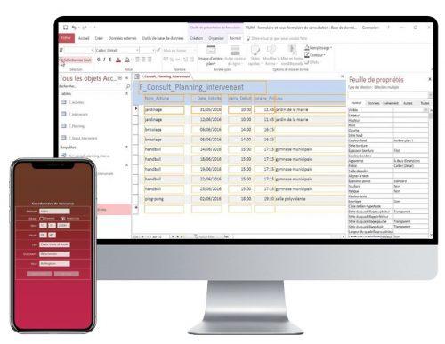 ecran-ordi-et-tel-logiciels-access2